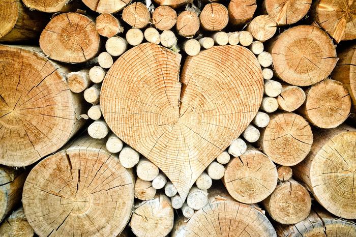 как защитить древесину - статья о выборе древсины при строительстве и правильной окраске лакокрасочными материалами